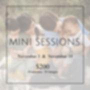 minisession.jpg