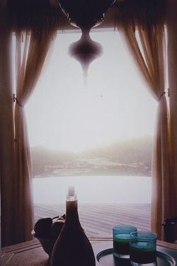 Curtain Pull Backs