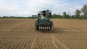 IRES 2020: semine al via / *2020 Sowing time at IRES
