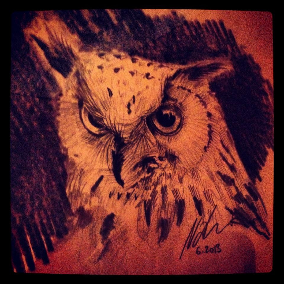 Owl ©Nadia Besomi