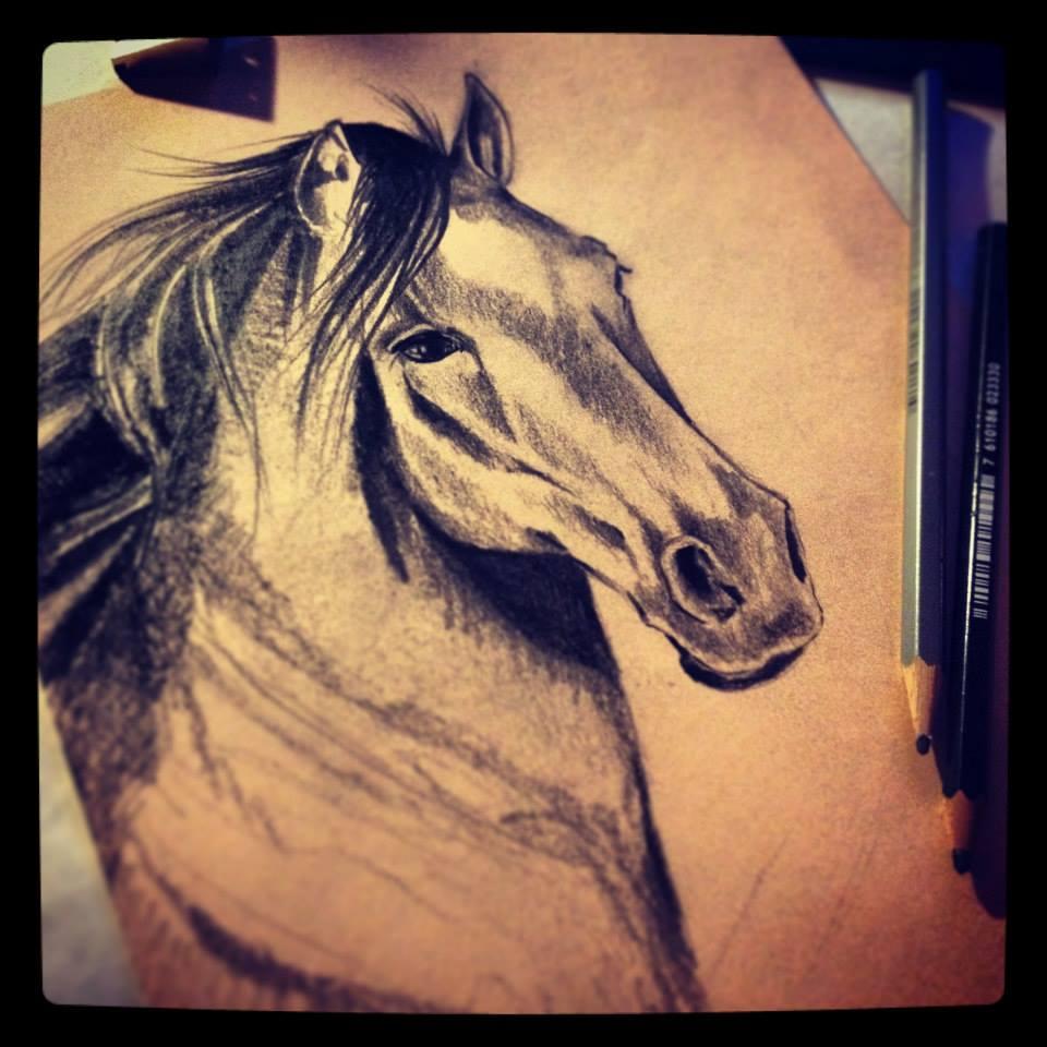 Horse ©Nadia Besomi