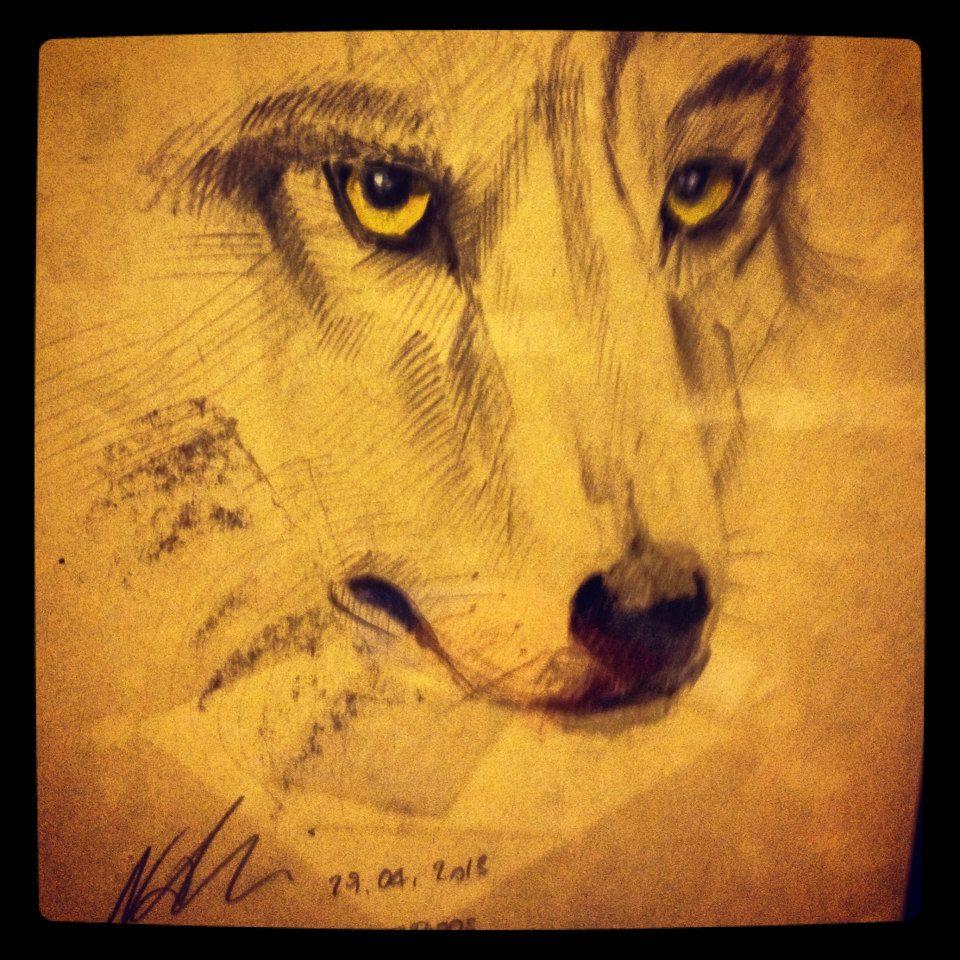 Wolf ©Nadia Besomi