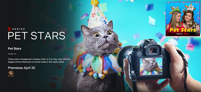 Pet stars Facebook cover photo.png