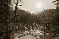 Mark James, Nymph Lake, 1998