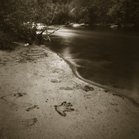Mark James,Handprint, Poudre River, 1999