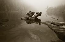 Mark James, Fog, Dream Lake, 2004