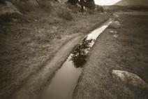 Mark James, Moraine Path, 2013