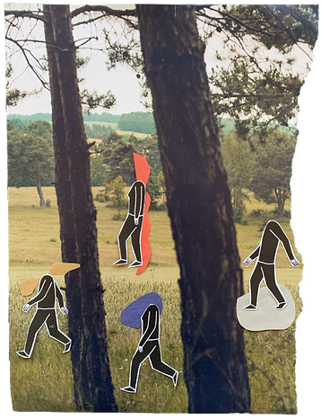 A collage of people walking outdoors in a forest