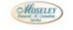 msy-logo-overlay.png