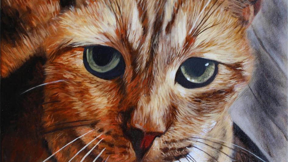 Tabby Green Eyes