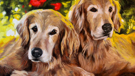 Twin Goldens