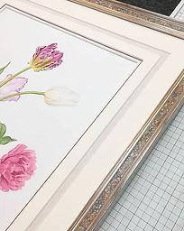 #botanicalart #customframing #植物画 #ボタニカル