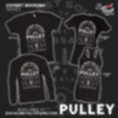 PULLY 2 FLYER.png