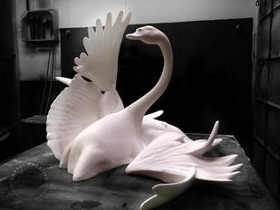Swan (Abbas)