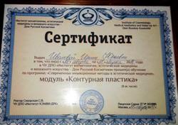 Сертификат по контурной пластике