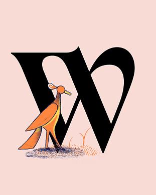 icon-redbird.png