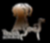 Logo-WS-neu.png