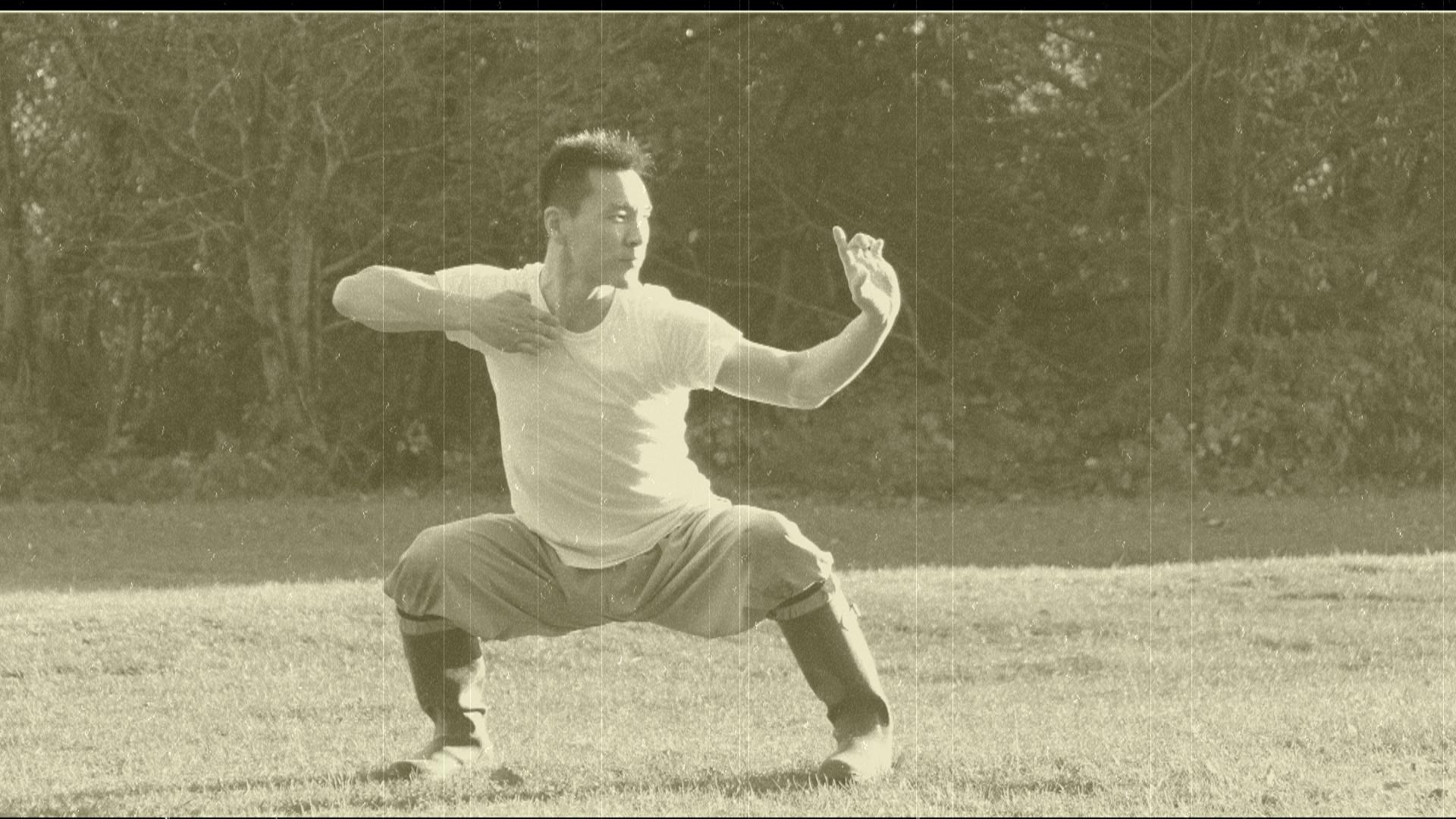 Master Yan Xin - Shaolin Ba Duan Jin