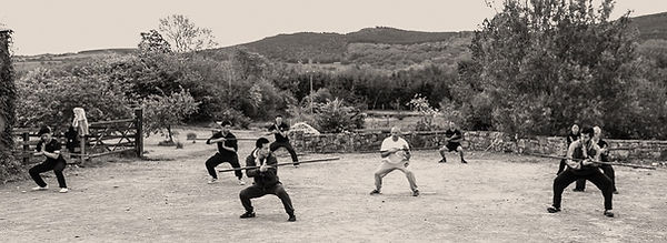 Master Yan Xin teachiing Shaolin Yin Shou Gun - a traditional Shaolin Staff form - Shaolin Kung Fu Ireland