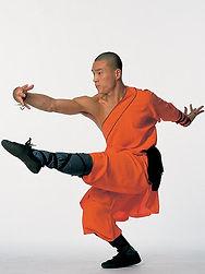 Master Yan Xin - qi xing quan - Seven Stars- Shaolin Kung Fu Ireland