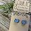 Thumbnail: Little Bird