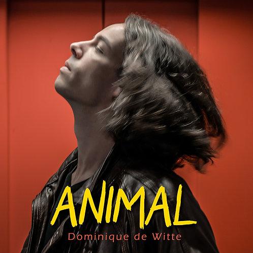 CD - ANIMAL
