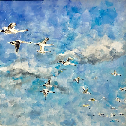 21 Swans
