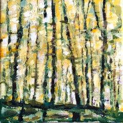 Fall Trees I
