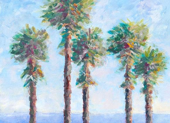 5 Palms