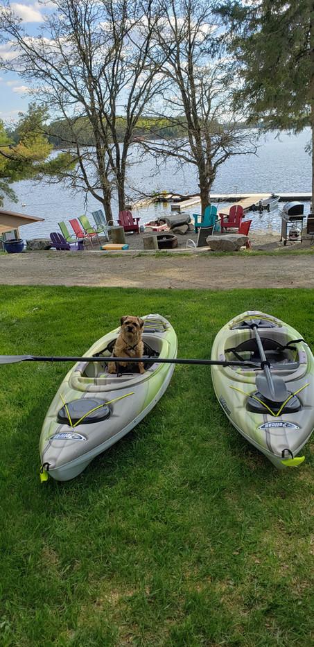 Jasper in a Kayak 2.jpg
