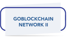 GOBLOCKCHAIN NETWORK II.jpg