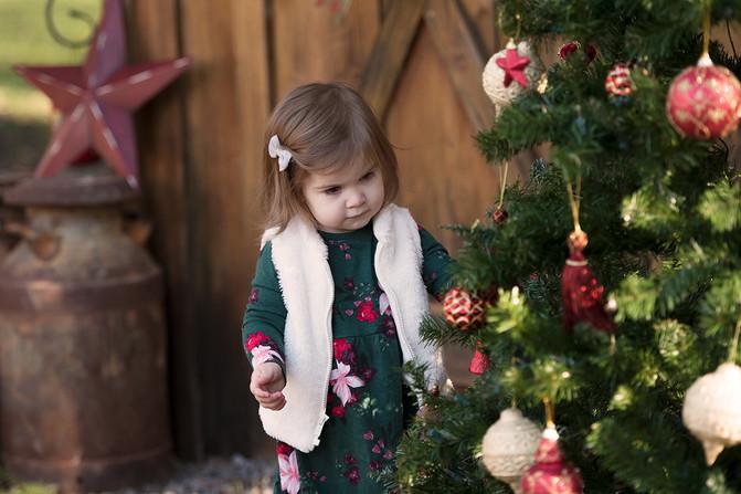 Toddler girl Christmas portrait