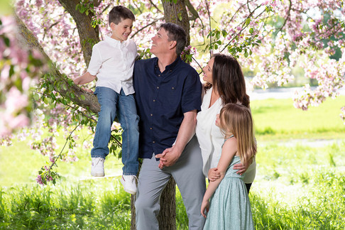 Family Cherry Blossom Portait