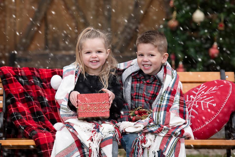 Toddler siblings Christmas portrait