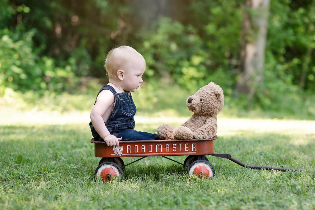 Toddler boy in wagon portrait