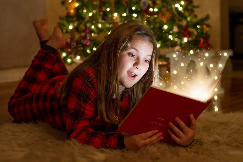 Christmas magic book portrait