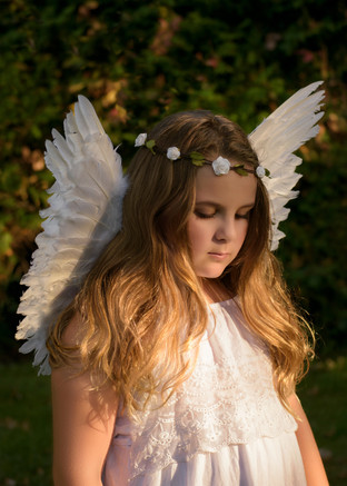 Angle Wings Portrait