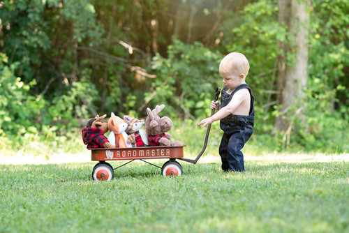 Toddler boy with wagon and stuffed friends