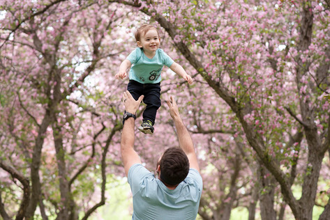 Father and Son Cherry Blossom Portrait
