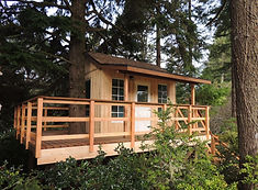 You know you want a custom Treefrog Treehouses™
