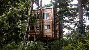 Custom Treefrog Treehouses™