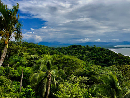 Feliz de Campo, Playa Tivives, Puntarenas, Costa Rica