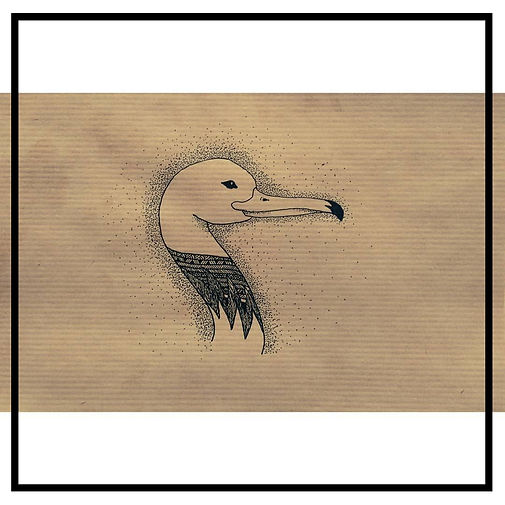 duck illustration_edited.jpg