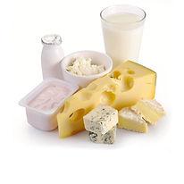 dairy 2.jpg