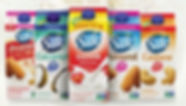 plant based milk.jpg