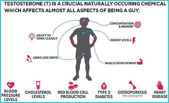 Testosterone def sx.jpg