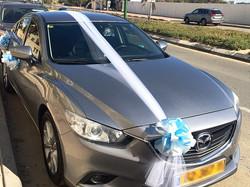 ערכת קישוט רכב לחתונה