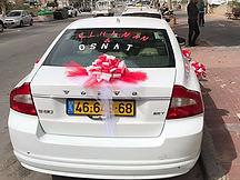 קישוט רכב לחתונה מס'52 + אותיות