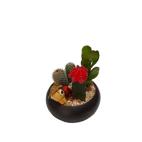4 cactus cocktail decorated with a black concrete vessel
