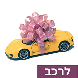 wedding-car-decoration-click-to-select